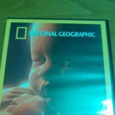 Cine: EN EL VIENTRE MATERNO, NATIONAL GEOGRAPHIC. Lote 120702555