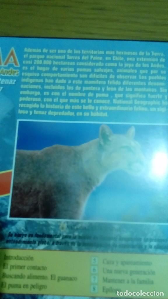 Cine: Puma el león de los Andes, National Geographic - Foto 2 - 120703503