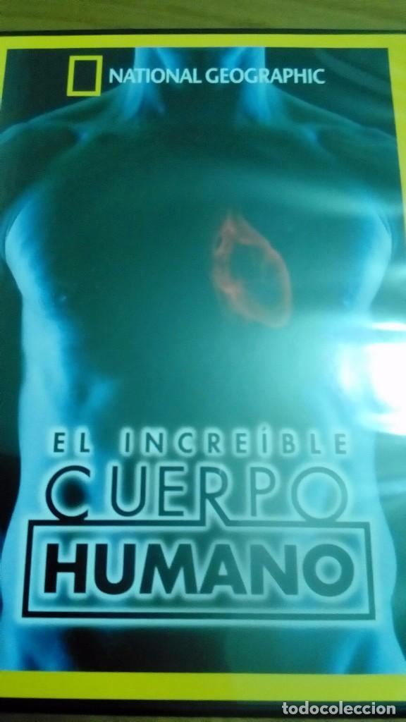 EL INCREIBLE CUERPO HUMANO, NATIONAL GEOGRAPHIC (Cine - Posters y Carteles - Documentales)