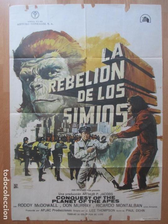 Cine: CARTEL CINE, LA REBELION DE LOS SIMIOS, RODDY MCDOWALL, DON MURRAY, 1973, C1419 - Foto 1 - 127936567