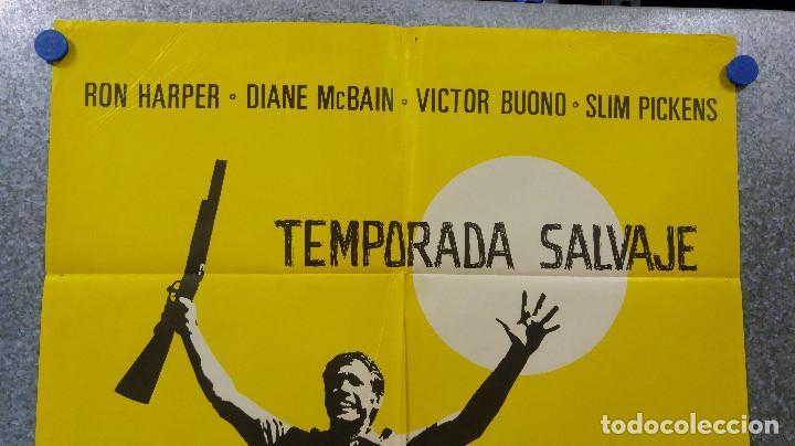 Cine: TEMPORADA SALVAJE. RON HARPER, DIANE MCBAIN. AÑO 1973 - Foto 2 - 147250146