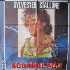 Cine: ACORRALADO - PÓSTER ORIGINAL CINE - 100 CM X 70 CM. Lote 147974314