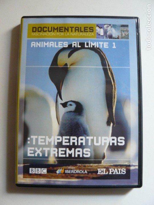 DVD ANIMALES AL LIMITE 1 - TEMPERATURAS EXTREMAS (Cine - Posters y Carteles - Documentales)