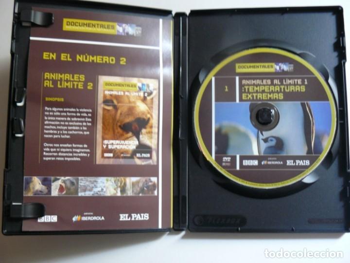 Cine: DVD ANIMALES AL LIMITE 1 - TEMPERATURAS EXTREMAS - Foto 2 - 179050942