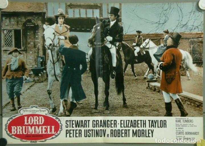 Cine: TU28D BEAU BRUMMELL ELIZABETH TAYLOR STEWART GRANGER SET 10 POSTERS ORIGINALES ITALIANOS 47X68 - Foto 10 - 183436157