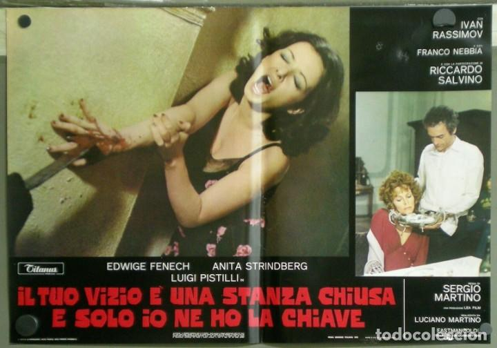 US80D VICIOS PROHIBIDOS GIALLO LESBIAN EDWIGE FENECH SERGIO MARTINO SET 6 POSTER ORIG ITALIANO 47X68 (Cine - Posters y Carteles - Terror)