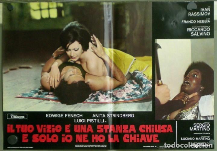 Cine: US80D VICIOS PROHIBIDOS GIALLO LESBIAN EDWIGE FENECH SERGIO MARTINO SET 6 POSTER ORIG ITALIANO 47X68 - Foto 3 - 183507708