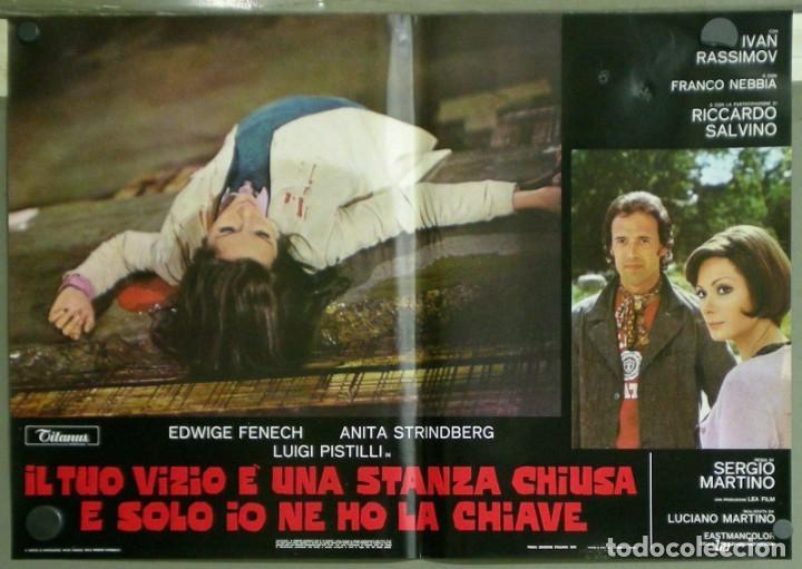 Cine: US80D VICIOS PROHIBIDOS GIALLO LESBIAN EDWIGE FENECH SERGIO MARTINO SET 6 POSTER ORIG ITALIANO 47X68 - Foto 6 - 183507708