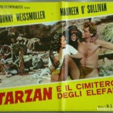Cine: UD91D TARZAN DE LOS MONOS JOHNNY WEISSMULLER MAUREEN O'SULLIVAN SET 6 POSTERS ORIG ITALIANOS 47X68. Lote 183547352