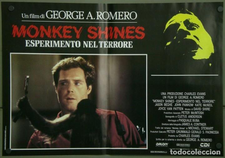 Cine: TZ16D ATRACCION DIABOLICA GEORGE A. ROMERO TERROR SET 8 POSTERS ORIGINALES ITALIANOS 47X68 - Foto 2 - 183577958
