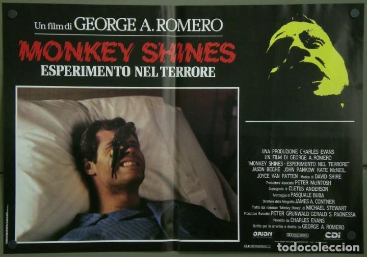 Cine: TZ16D ATRACCION DIABOLICA GEORGE A. ROMERO TERROR SET 8 POSTERS ORIGINALES ITALIANOS 47X68 - Foto 3 - 183577958