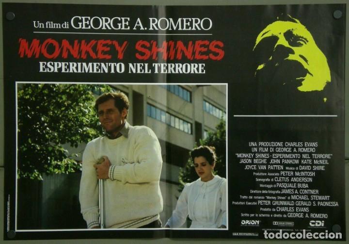 Cine: TZ16D ATRACCION DIABOLICA GEORGE A. ROMERO TERROR SET 8 POSTERS ORIGINALES ITALIANOS 47X68 - Foto 4 - 183577958