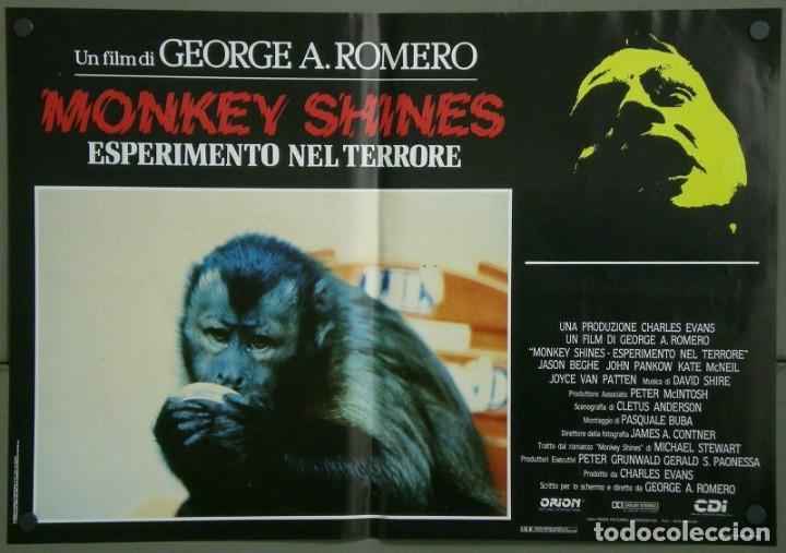 Cine: TZ16D ATRACCION DIABOLICA GEORGE A. ROMERO TERROR SET 8 POSTERS ORIGINALES ITALIANOS 47X68 - Foto 5 - 183577958