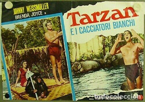 Cine: bk42D TARZAN Y LA CAZADORA JOHNNY WEISSMULLER SET 3 POSTERS ORIGINALES ITALIANOS 47X68 - Foto 2 - 186345225