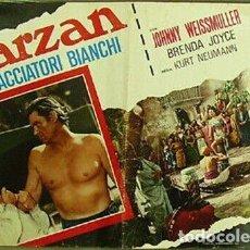 Cine: BK42D TARZAN Y LA CAZADORA JOHNNY WEISSMULLER SET 3 POSTERS ORIGINALES ITALIANOS 47X68. Lote 186345225