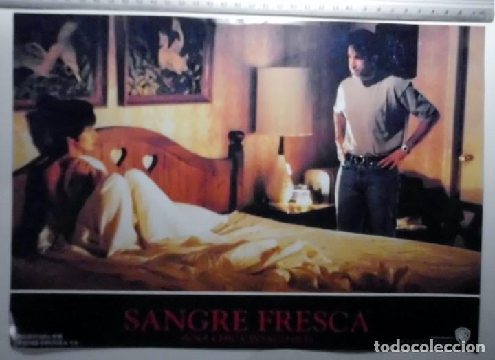 Cine: SANGRE FRESCA, PROSPECTO DE PELÍCULA - Foto 2 - 191108218