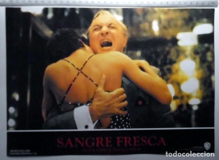 Cine: SANGRE FRESCA, PROSPECTO DE PELÍCULA - Foto 3 - 191108218