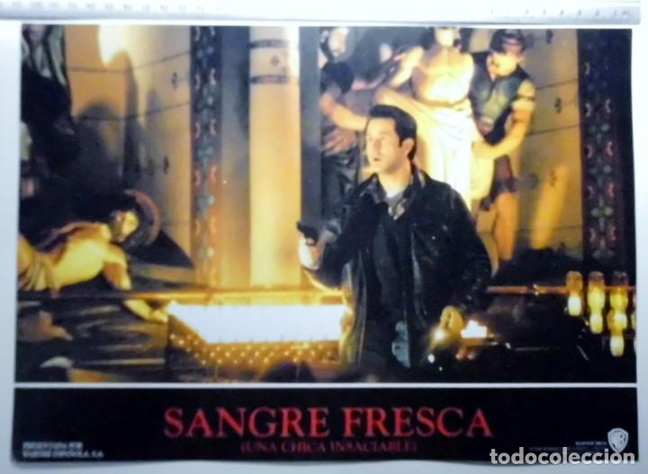 Cine: SANGRE FRESCA, PROSPECTO DE PELÍCULA - Foto 4 - 191108218