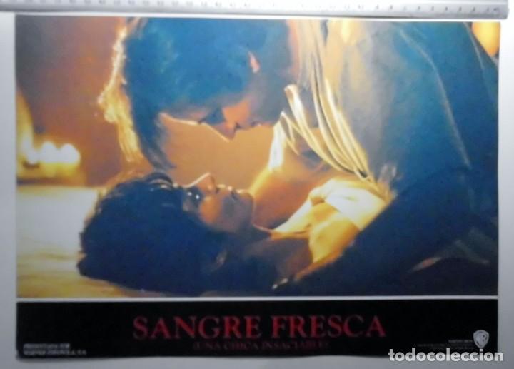 Cine: SANGRE FRESCA, PROSPECTO DE PELÍCULA - Foto 5 - 191108218