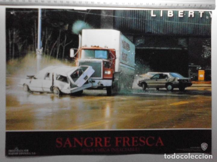 Cine: SANGRE FRESCA, PROSPECTO DE PELÍCULA - Foto 6 - 191108218