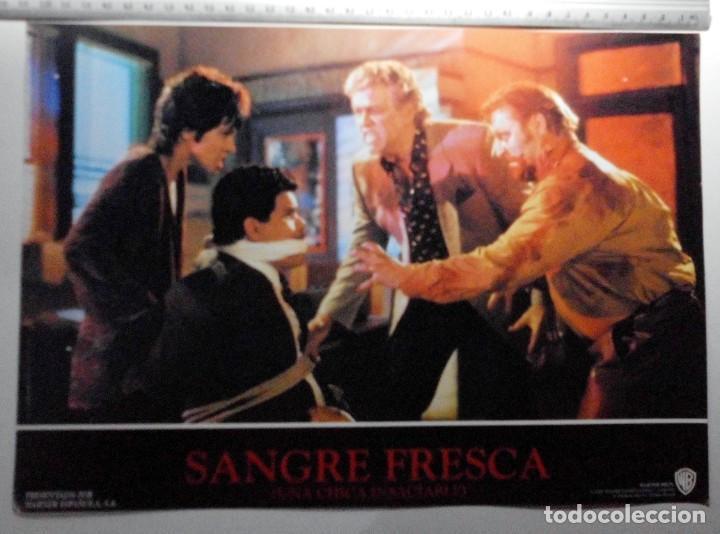 Cine: SANGRE FRESCA, PROSPECTO DE PELÍCULA - Foto 7 - 191108218