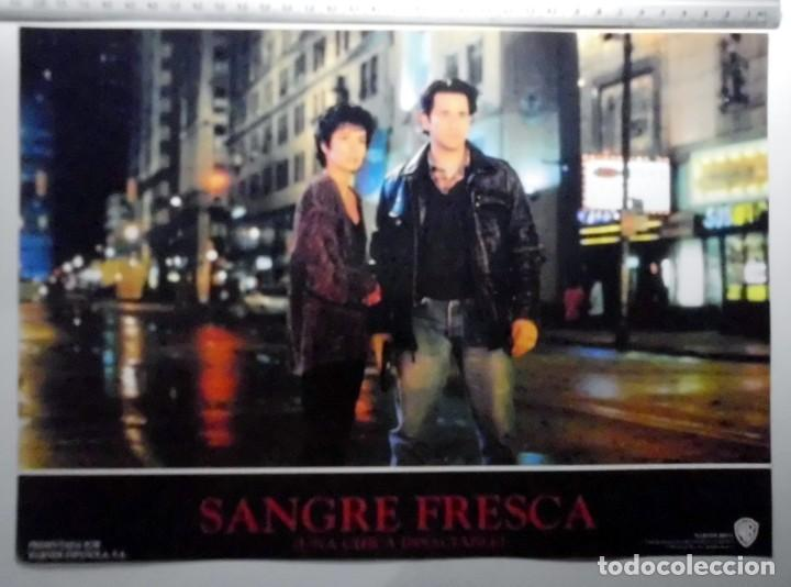 Cine: SANGRE FRESCA, PROSPECTO DE PELÍCULA - Foto 8 - 191108218