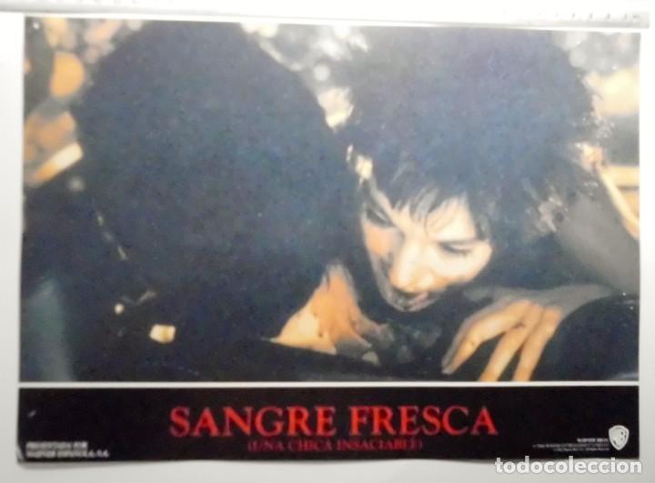 Cine: SANGRE FRESCA, PROSPECTO DE PELÍCULA - Foto 10 - 191108218