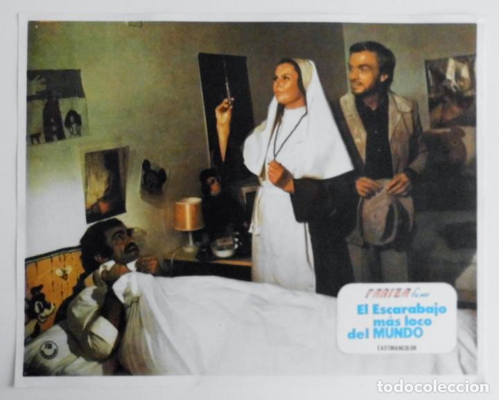 Cine: EL ESCARABAJO MAS LOCO DEL MUNDO, PROSPECTO DE PELÍCULA - Foto 11 - 191110406