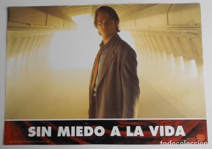 Cine: SIN MIEDO A LA VIDA, PROSPECTO DE PELÍCULA - Foto 11 - 191116583