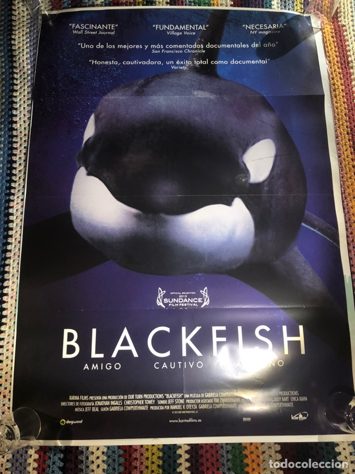 BLACKFISH DOCUMENTAL POSTER CINE ORIGINAL 70X100CM (Cine - Posters y Carteles - Documentales)