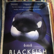 Cine: BLACKFISH DOCUMENTAL POSTER CINE ORIGINAL 70X100CM. Lote 195098225