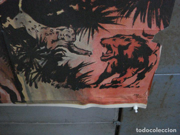 Cine: CDO 791 TARZAN EN PELIGRO LEX BARKER MCP POSTER ORIGINAL 70X100 ESPAÑOL R-73 - Foto 9 - 197547520