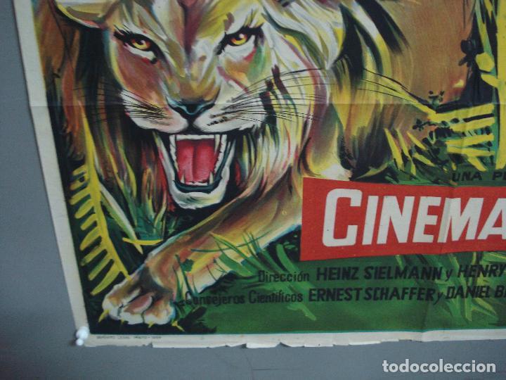 Cine: CDO 2365 LOS PEDIGÜEÑOS TONY LEBLANC POSTER ORIGINAL 70X100 ESPAÑOL R-73 - Foto 5 - 204155821