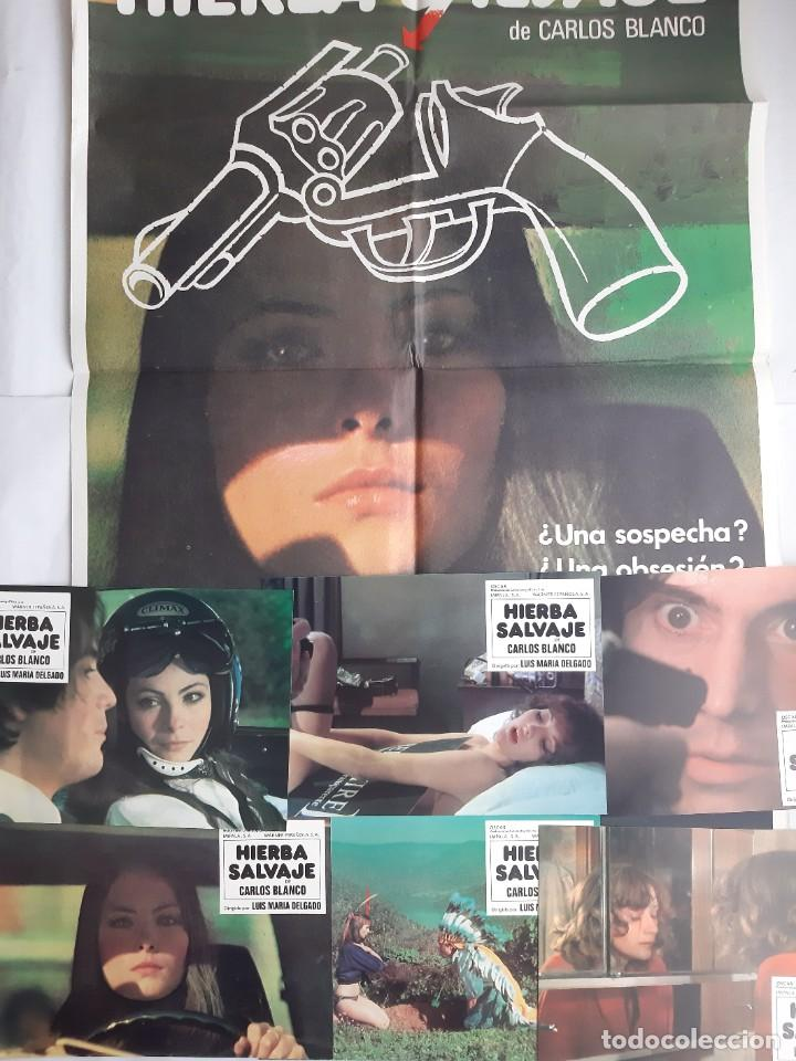 ANTIGUO CARTEL CINE HIERBA SALVAJE + 12 FOTOCROMOS 1978 MGR CC204 (Cine - Posters y Carteles - Acción)