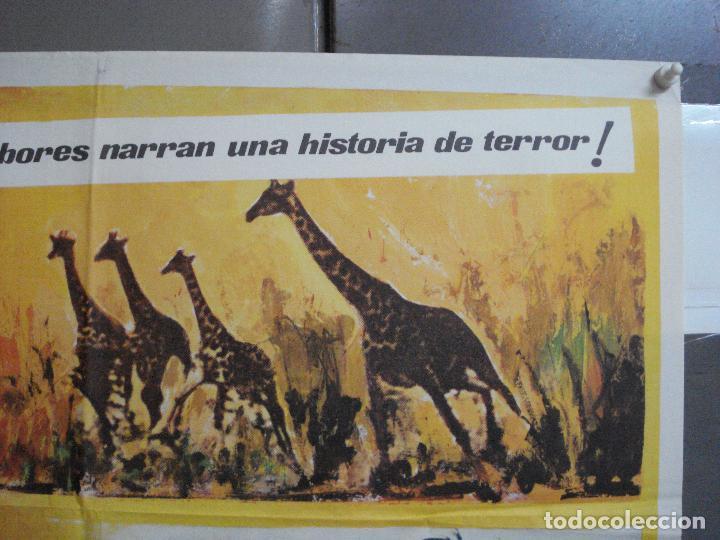 Cine: CDO 3598 TAMBORES DE AFRICA FRANKIE AVALON Hefe POSTER ORIGINAL 70X100 ESTRENO - Foto 6 - 210046470
