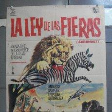 Cine: CDO 3923 LA LEY DE LAS FIERAS DOCUMENTAL AFRICA SALVAJE SERENGETI POSTER ORIGINAL 70X100 ESTRENO. Lote 210771199