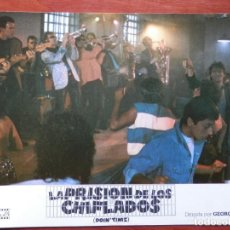 Cine: 2 LOBBY CARD - LA PRISIÓN DE LOS CHIFLADOS - 34 X 24 CENTÍMETROS. Lote 211751737