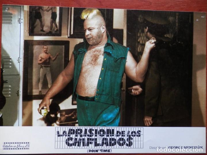 Cine: 2 LOBBY CARD - LA PRISIÓN DE LOS CHIFLADOS - 34 X 24 CENTÍMETROS - Foto 2 - 211751737