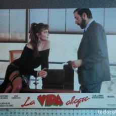 Cine: LOBBY CARD - LA VIDA ALEGRE - 34 X 24 CENTÍMETROS. Lote 211752313
