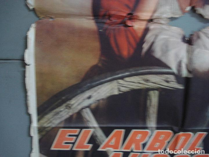 Cine: CDOX 4251 EL ARBOL DEL AHORCADO GARY COOPER MARIA SCHELL DELMER DAVES POSTER ORIG 70X100 ESTRENO - Foto 4 - 212015716