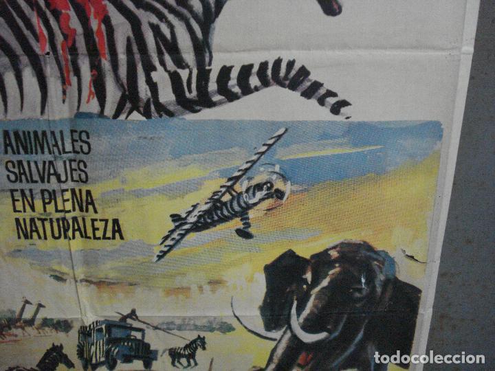 Cine: CDO 5315 LA LEY DE LAS FIERAS DOCUMENTAL AFRICA SALVAJE SERENGETI POSTER ORIGINAL 70X100 ESTRENO - Foto 8 - 218495161