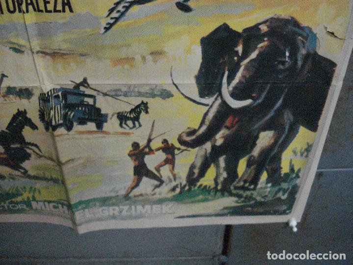 Cine: CDO 5315 LA LEY DE LAS FIERAS DOCUMENTAL AFRICA SALVAJE SERENGETI POSTER ORIGINAL 70X100 ESTRENO - Foto 9 - 218495161