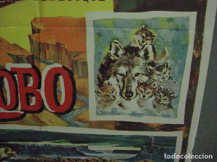 Cine: CDO 5412 LA LEYENDA DE LOBO WALT DISNEY POSTER ORIGINAL ESTRENO 70X100 - Foto 8 - 218629203