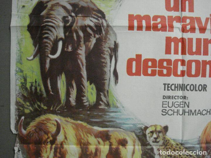 Cine: CDO 7425 UN MARAVILLOSO MUNDO DESCONOCIDO EUGENE SCHUHMACHER DOCUMENTAL ANIMALES ORIG 70X100 ESTRENO - Foto 3 - 227863520
