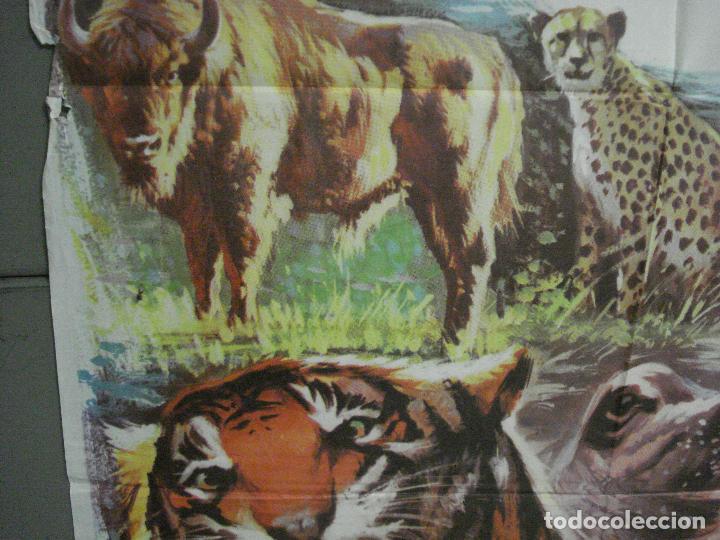 Cine: CDO 7425 UN MARAVILLOSO MUNDO DESCONOCIDO EUGENE SCHUHMACHER DOCUMENTAL ANIMALES ORIG 70X100 ESTRENO - Foto 4 - 227863520
