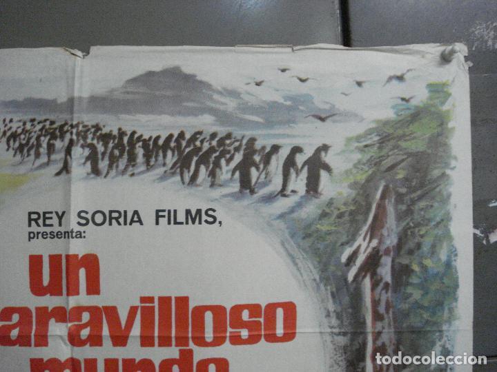 Cine: CDO 7425 UN MARAVILLOSO MUNDO DESCONOCIDO EUGENE SCHUHMACHER DOCUMENTAL ANIMALES ORIG 70X100 ESTRENO - Foto 6 - 227863520