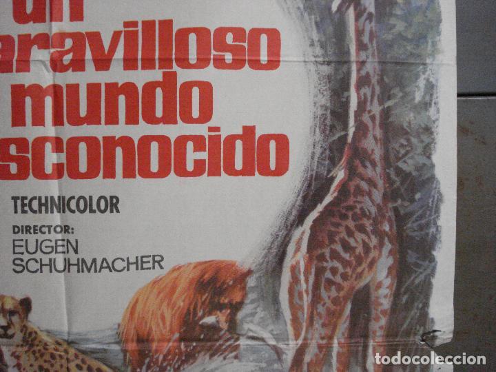 Cine: CDO 7425 UN MARAVILLOSO MUNDO DESCONOCIDO EUGENE SCHUHMACHER DOCUMENTAL ANIMALES ORIG 70X100 ESTRENO - Foto 7 - 227863520