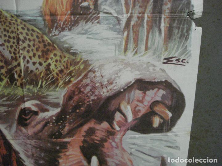 Cine: CDO 7425 UN MARAVILLOSO MUNDO DESCONOCIDO EUGENE SCHUHMACHER DOCUMENTAL ANIMALES ORIG 70X100 ESTRENO - Foto 8 - 227863520