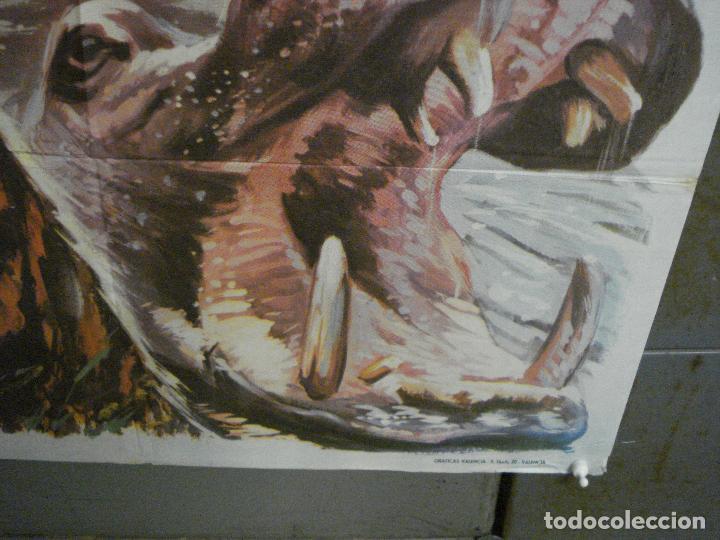 Cine: CDO 7425 UN MARAVILLOSO MUNDO DESCONOCIDO EUGENE SCHUHMACHER DOCUMENTAL ANIMALES ORIG 70X100 ESTRENO - Foto 9 - 227863520