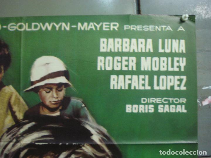 Cine: CDO 7568 UNA MONEDA CON AUREOLA BORIS SAGAL CARRERAS DE CABALLOS BARBARA LUNA POSTER ORIG 70x100 - Foto 6 - 228926100